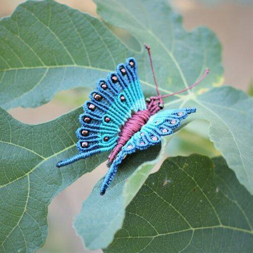 broche papillon bleu et vert